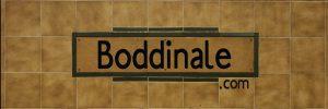 Boddinale 2018